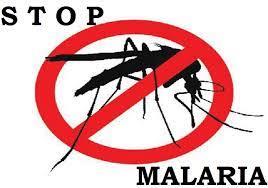 2018 MM Bebas Malaria – Berita Terbaru, Akurat & Terpercaya